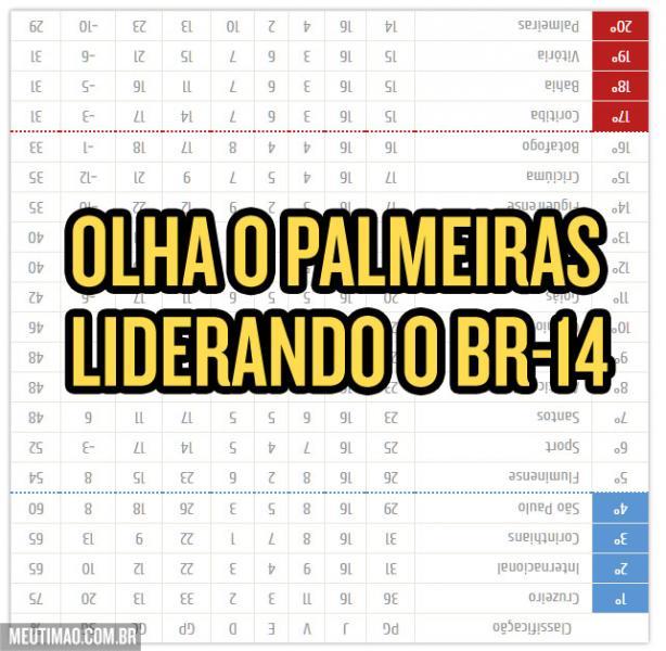 Palmeiras liderando o Brasileir�o